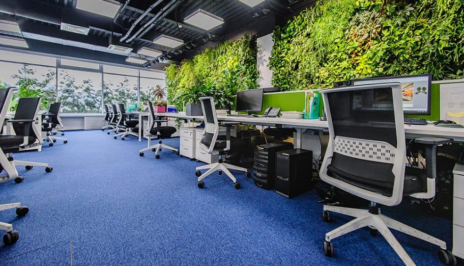 Фото офиса в Москве
